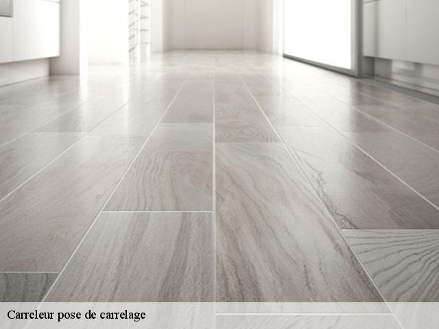Carreleur pose de carrelage  91150
